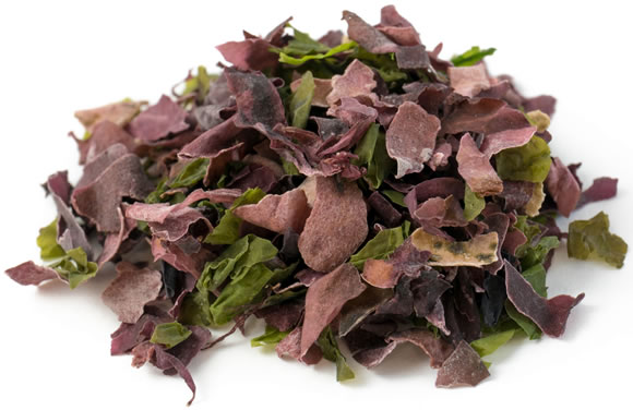 Ocean Salad Seaweed - from Detox Trading Superfoods