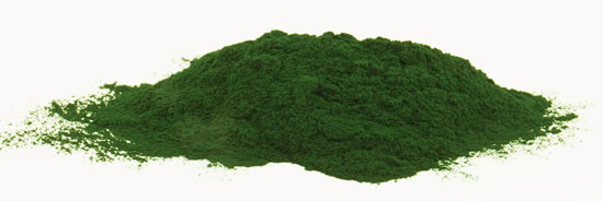 Organic Spirulina from Detox Trading Superfoods