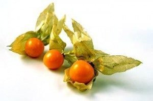Golden Berry - Physalis